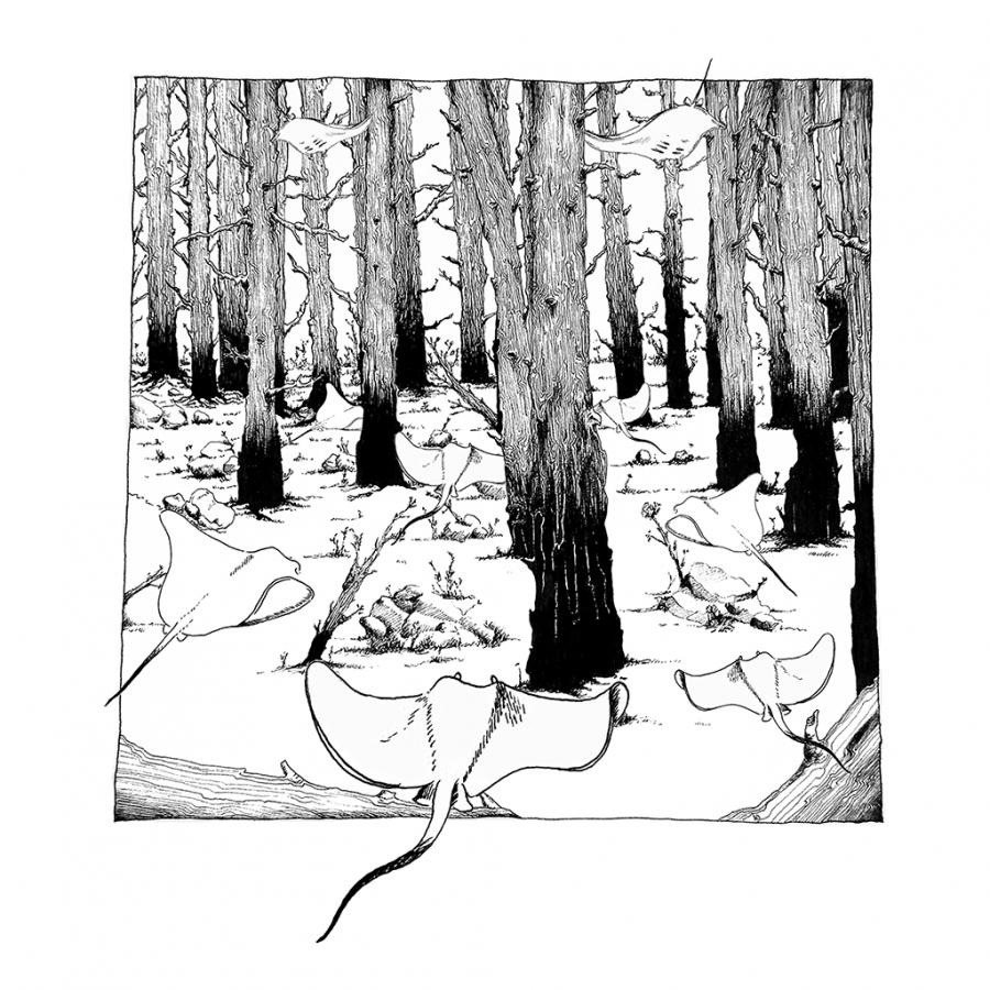 Thumbnail-5