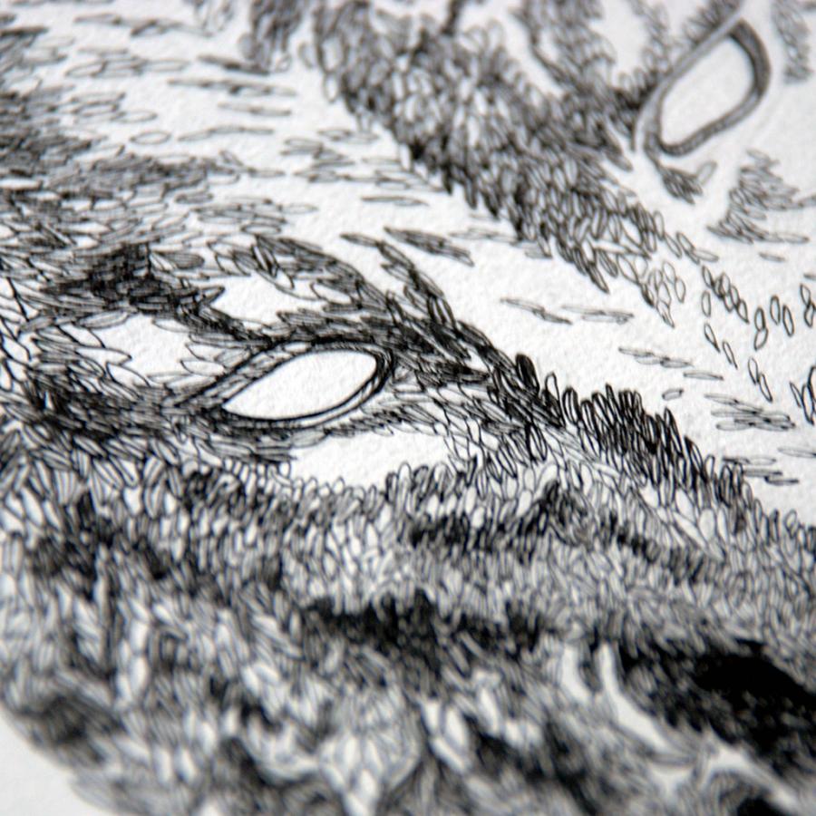 Thumbnail-7